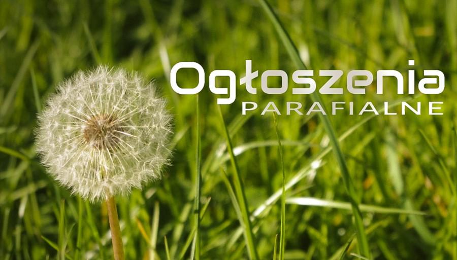 Ogłoszenia Duszpasterskie, 18. kwietnia 2021 roku